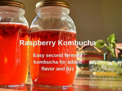Fermentation and Raspberry Kombucha