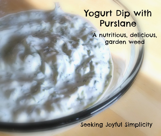 Yogurt, dill, sour cream, and purslane dip