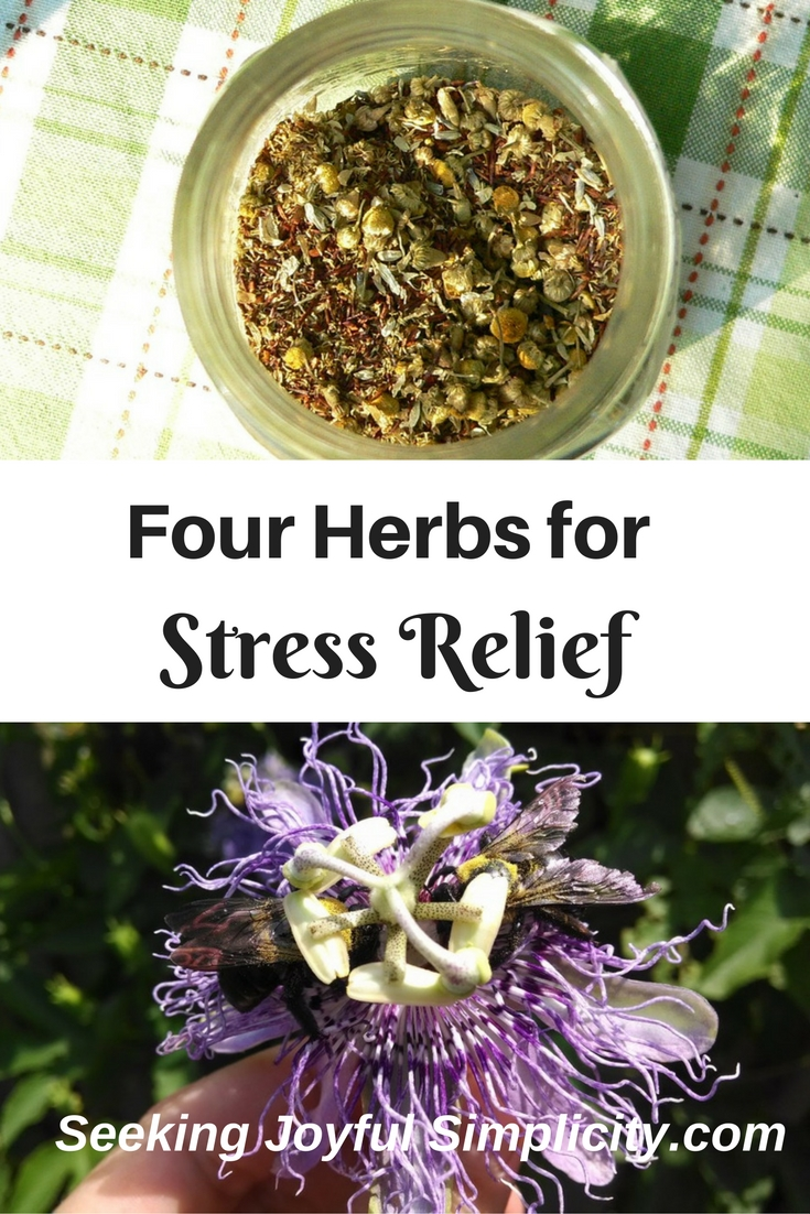 Herbs for Stress, Overwhelm, Adrenal Fatigue