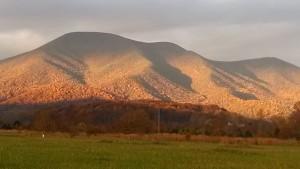 Sunrise shadows1