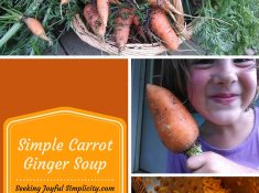 Super Simple, Super Tasty, Carrot and Ginger Soup