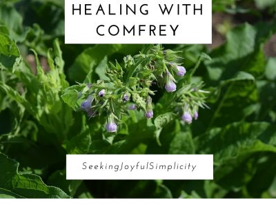 Healing With Comfrey and How to Use Comfrey