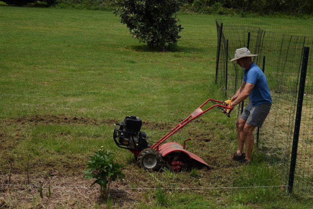 Tilling Lawn