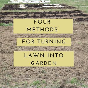 Four Methods for Transforming Lawn into Garden. Each of these four methods have their advantages and disadvantages, and your choice of method will depend on your circumstances and resources.