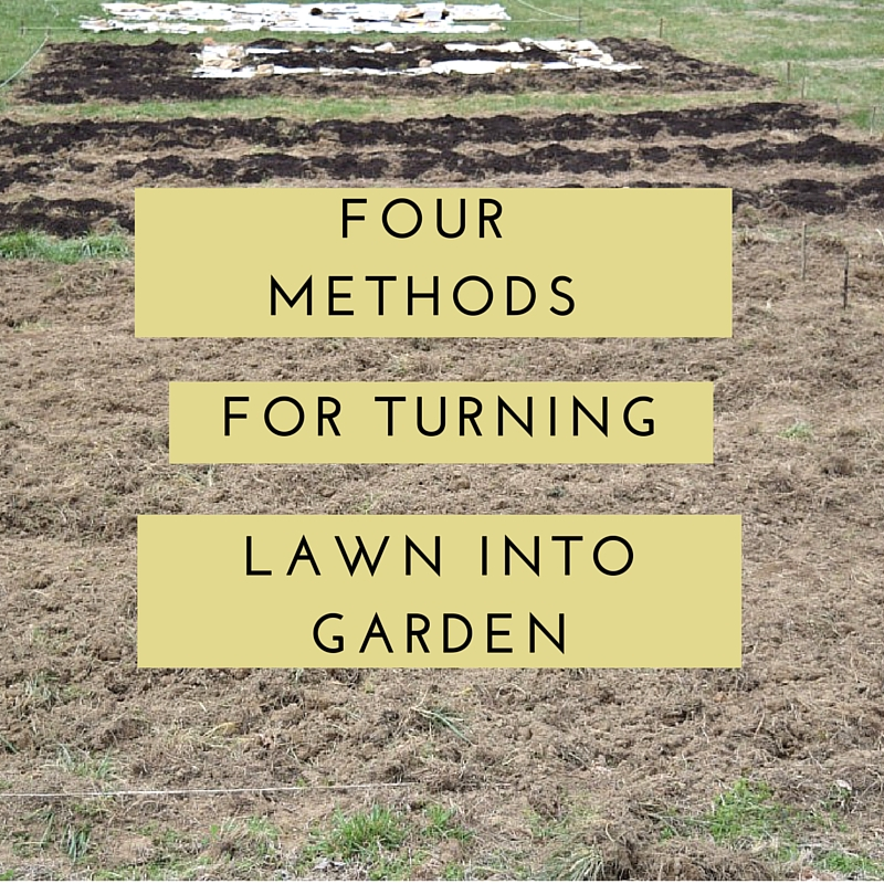Four Easy Methods for Turning Lawn into garden