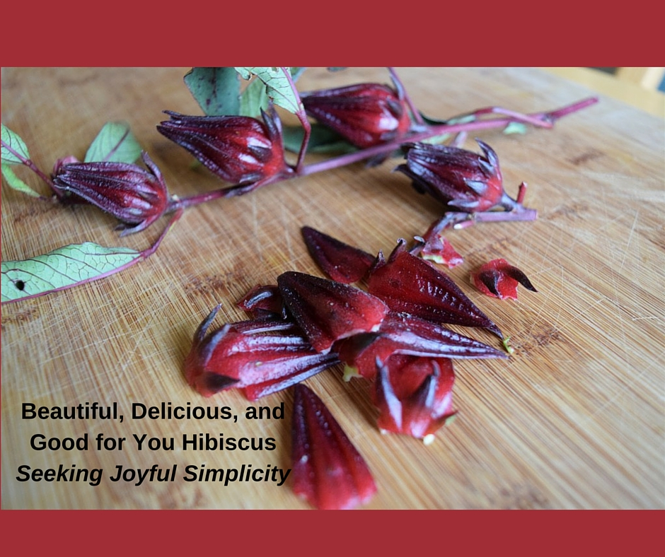 Hibiscus sabdariffa produces beautiful flowers and is used world-wide for food and medicine. Learn about the current science for hibiscus medicine and enjoy these delicious hibiscus recipes.