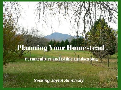 Planning Your Homestead – Edible Landscaping and Permaculture
