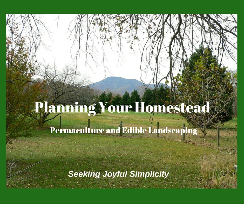 Planning Your Homestead