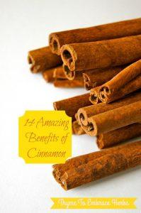 14-amazing-benefits-of-cinnamon