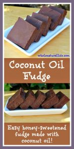 Coconut-oil-fudge-620x1251