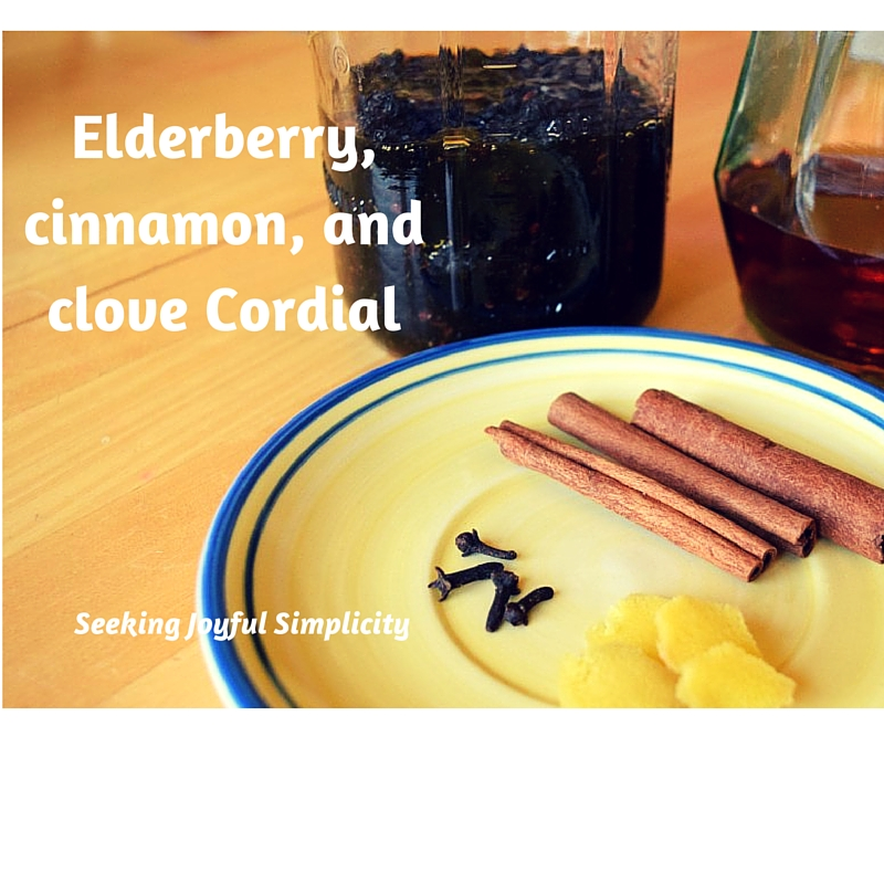 Elderberry, cinnamon, and clove Cordial. I have a great suggestion for a simple healthy indulgence. Have you tried making herb-infused cordials? Cordials are fun to make, fun to drink, and can be used as gifts for all seasons. Use warming herbs for winter months, cooling herb combinations for summer season, or enjoy anytime!