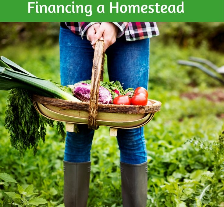 We believe investing in your homestead is investing in your future. We chose to change our lifestyle, leave the suburbs, downsize our home and belongings, reduce our work hours, and devote more time to family, home, and creating a productive homestead. Our biggest worry? Can we afford it. Here is our story of starting a homestead and financing our homestead.