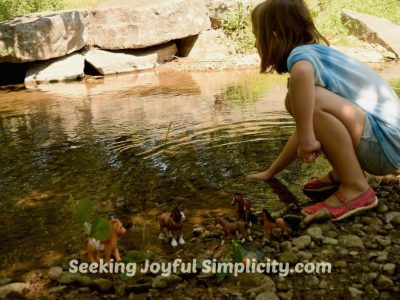 Homeschooling – Finding a New Rhythm
