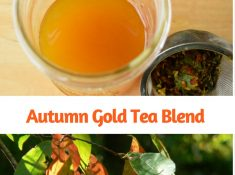 Food and nutrition is the foundation of good health. Herbalists always start with nourishing herbal infusions, and I drink one nearly every day. The herb combinations I use change with the seasons, and with the arrival of fall weather, I am choosing warming and immune boosting herbs. Here are the herbs for my autumn gold tea blend and some of their benefits.