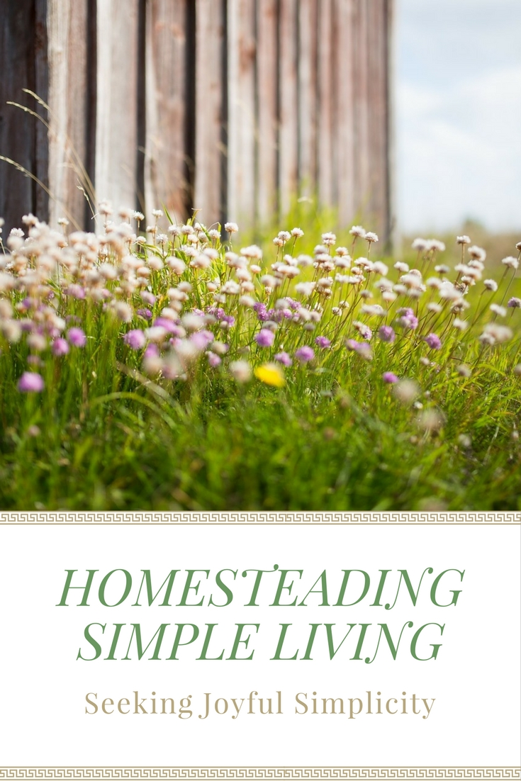 Choosing a simple homesteading life can be about self-sufficiency, spending more time with family, using fewer resources, growing healthy food, connecting with nature.