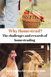 Do you want to live a homesteading lifestyle but don't know where to start? Or perhaps you are already on the path but want to do more. These homesteaders share the challenges and rewards of the homesteading lifestyle