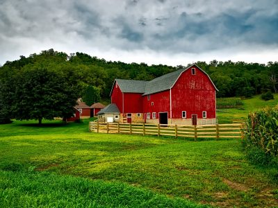 Homesteading Lifestyle – Perspective and Patience