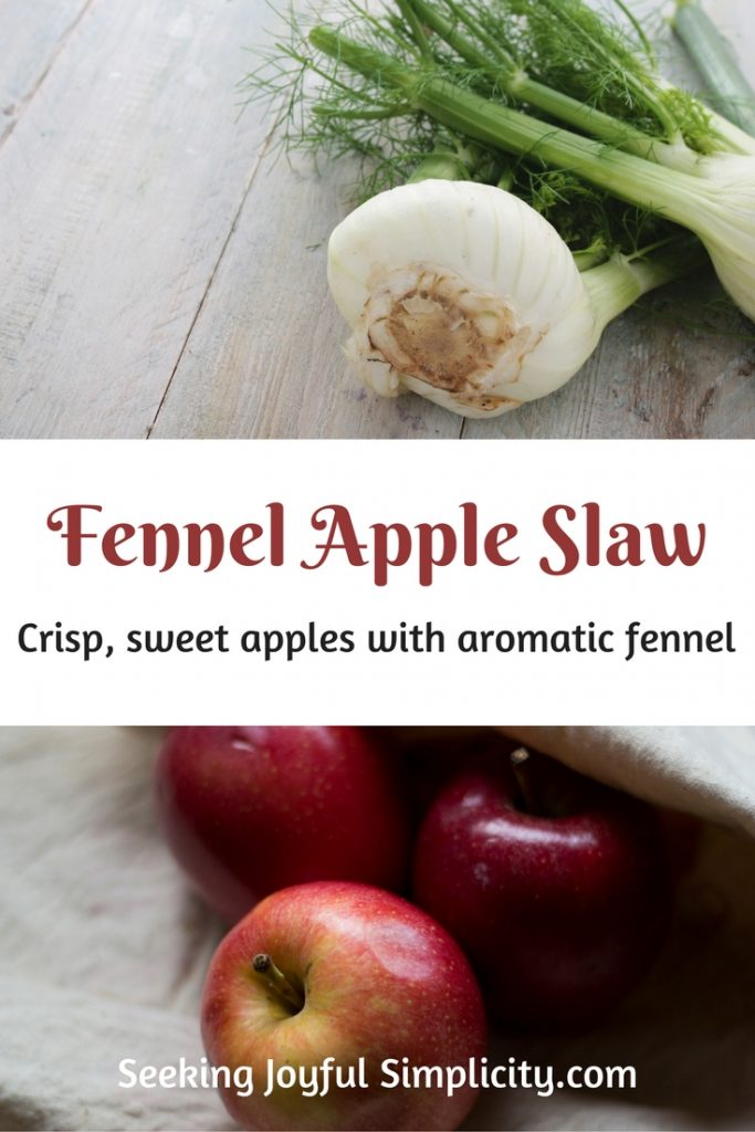 Fresh fennel recipe - Combing sweet apples with crunchy fresh fennel, cider vinegar, and molasses for a unique slaw.