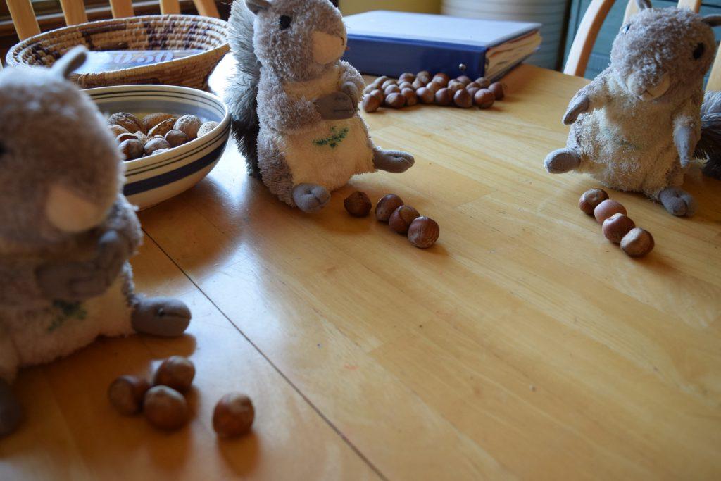 math squirrels