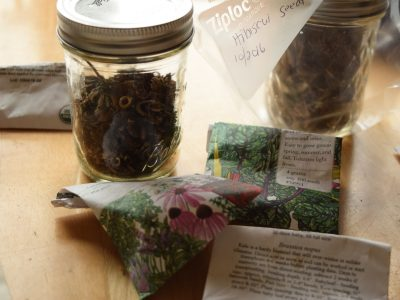 How to Organize Garden Seeds – DIY Seed Organizer