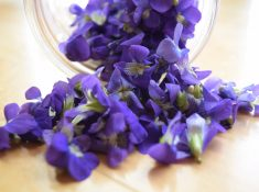 Violet recipe and how to make violet syrup