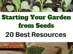 Do you start your garden from seed or do you purchase plants already started? There are a lot of reasons for starting your garden from seeds. Buying seeds is much less expensive than purchasing plants, you can experiment by choosing unique colors, flavors and heirloom varieties, support smaller seed companies, and enjoy earlier harvests. Here are 20 best resources on how to start seeds.