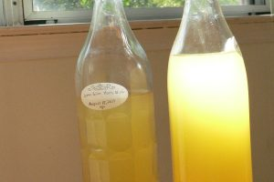Make your own honey wine