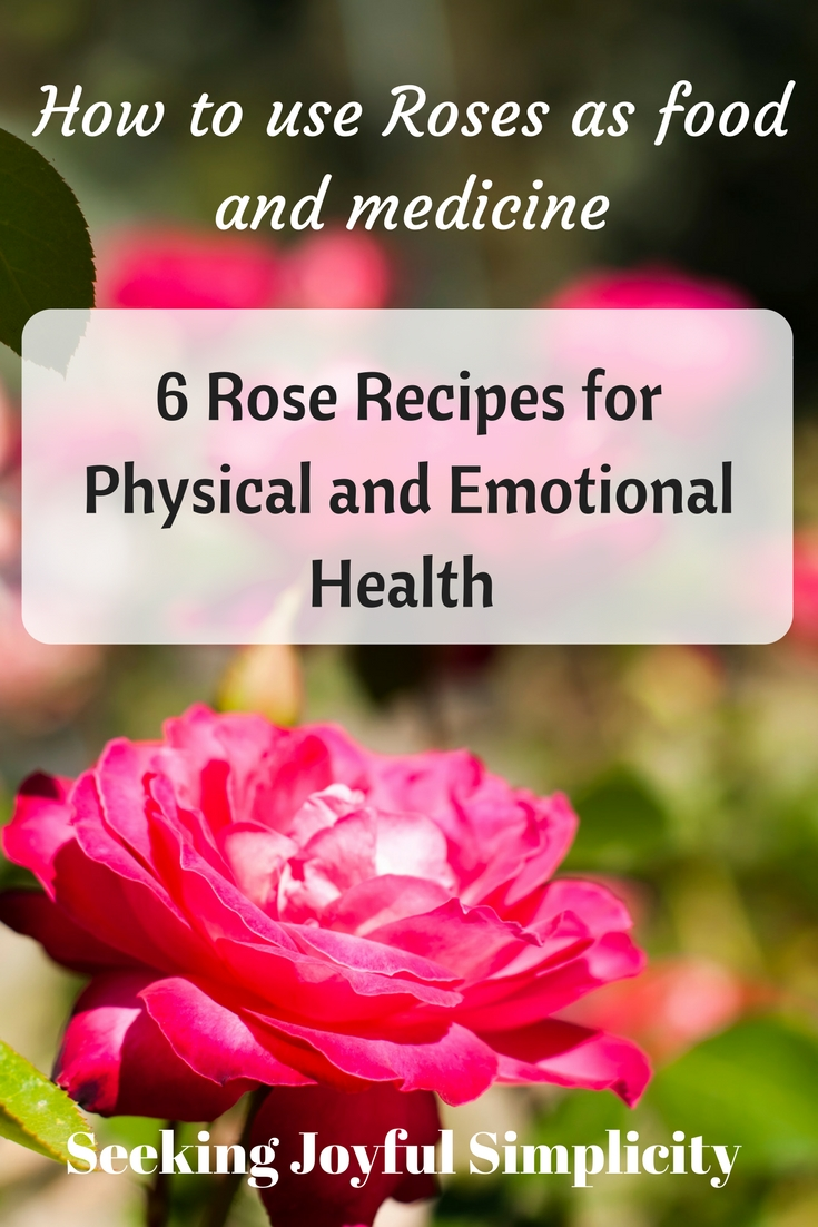 Healing medicine of the rose and roses as food and medicine with recipes for making rose elixir, rose honey, rose infused vinegar, rose tinctures, and rose water
