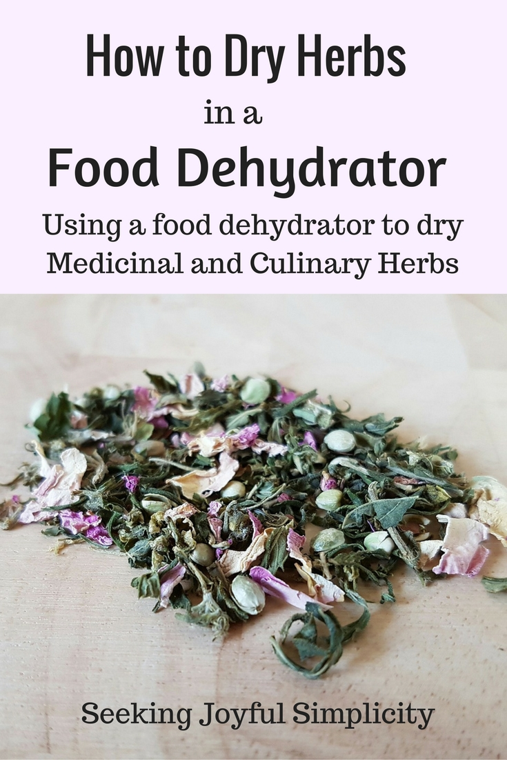 How to dry herbs in a dehydrator - advantages to using a dehydrator versus an oven, what to look for when buying a dehydrator and how to best dry herbs in a dehydrator.