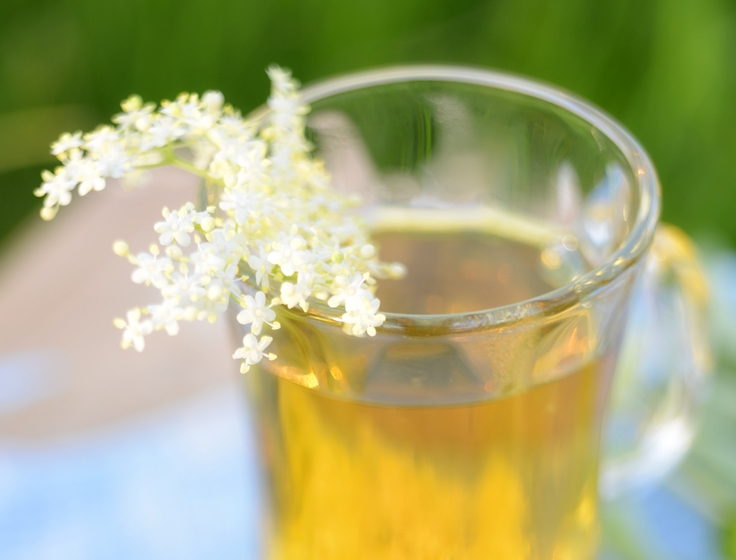 4 Herbal Remedies for Stress – Finding Relief from Stress, Anxiety, and Depression