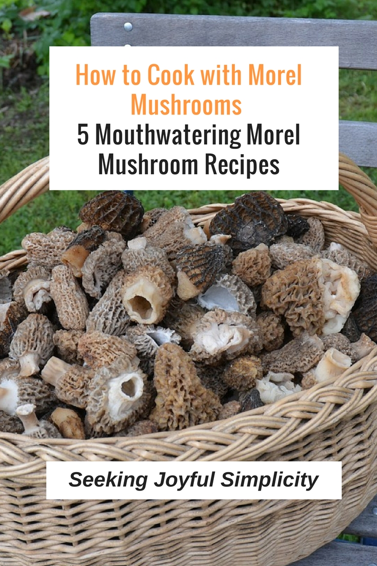 Easy and delicious morel mushroom recipes - try these 5 mouthwatering morel mushroom recipes.