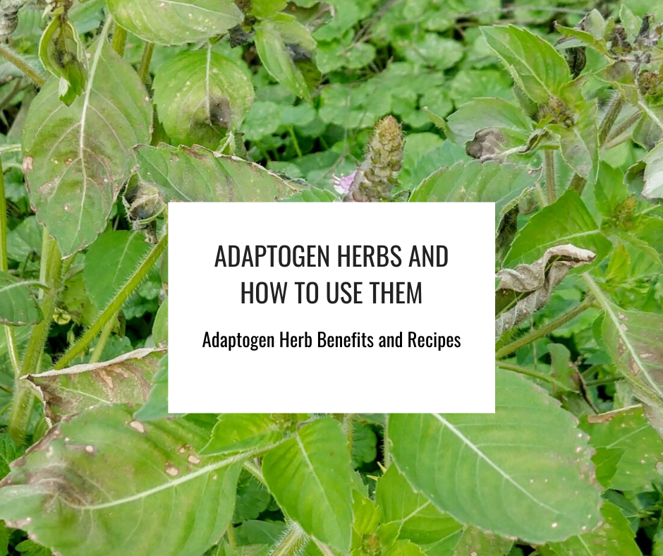 How to Use Adaptogen Herbs